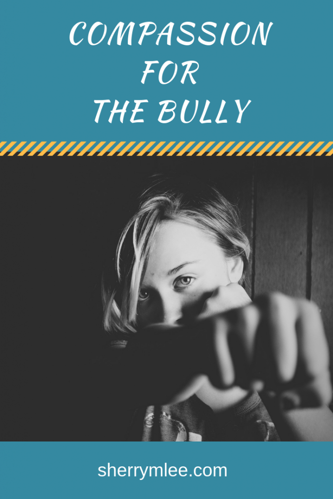 Compassion for the bully; Ever been bullied or been a bully yourself? As the bullying progressed, I responded with this instead...; bullying activities; dealing with bullies; dealing with bullying; #bullying #howtodealwithbullies