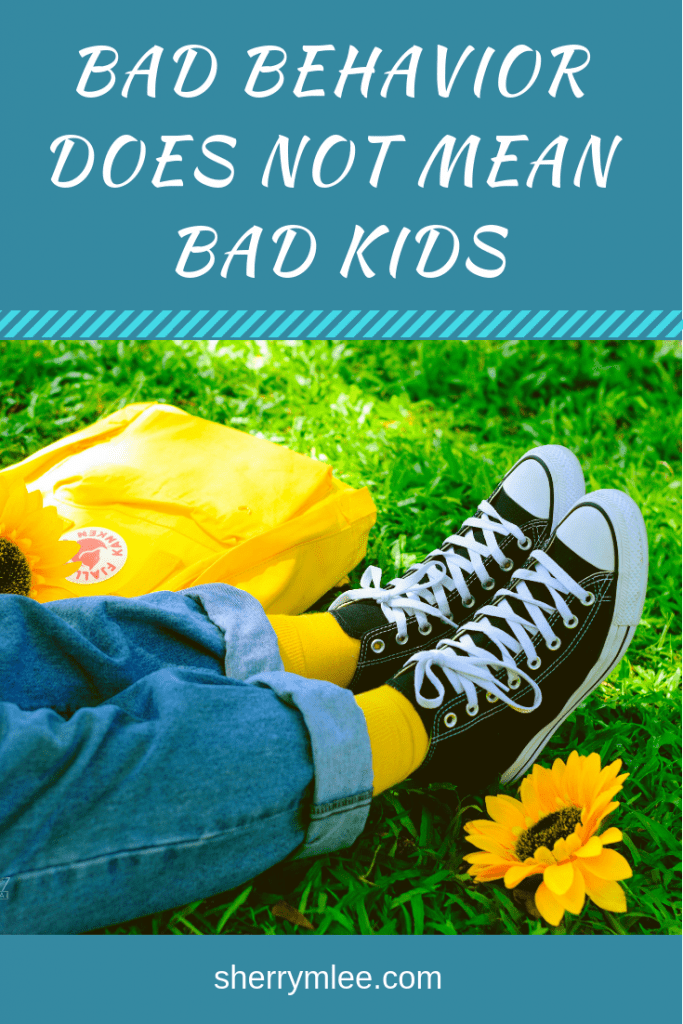Bad Behavior Does Not Mean Bad Kids; behavior issues in children; behavior kids; aggressive children; #kidsandbehavior
